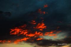 « L'enfer du Covid »  de Thierry Gordien